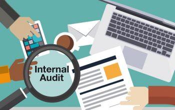 المراجعة الداخلية - internal-audit